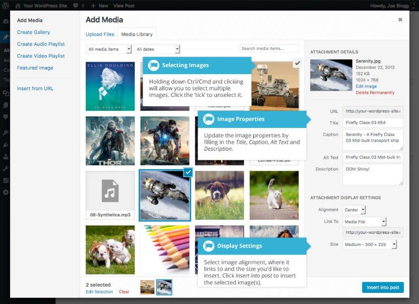 Aggiunta di immagini e altri media WordPress : seleziona immagine