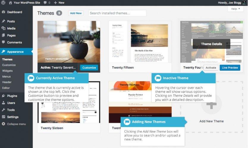 Aspetto WordPress : selezione tema