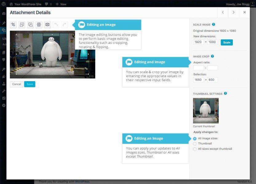 Libreria multimediale WordPress : modifica file media
