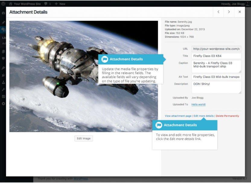 Libreria multimediale WordPress : visualizzazione file