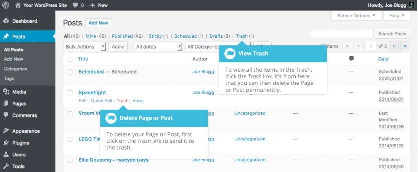 Modifica ed eliminazione di un contenuto esistente su WordPress : eliminazione contenuto