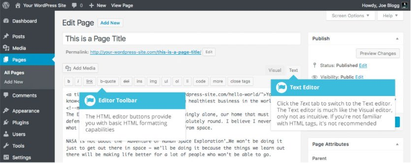 Passare all'editor di testo WordPress
