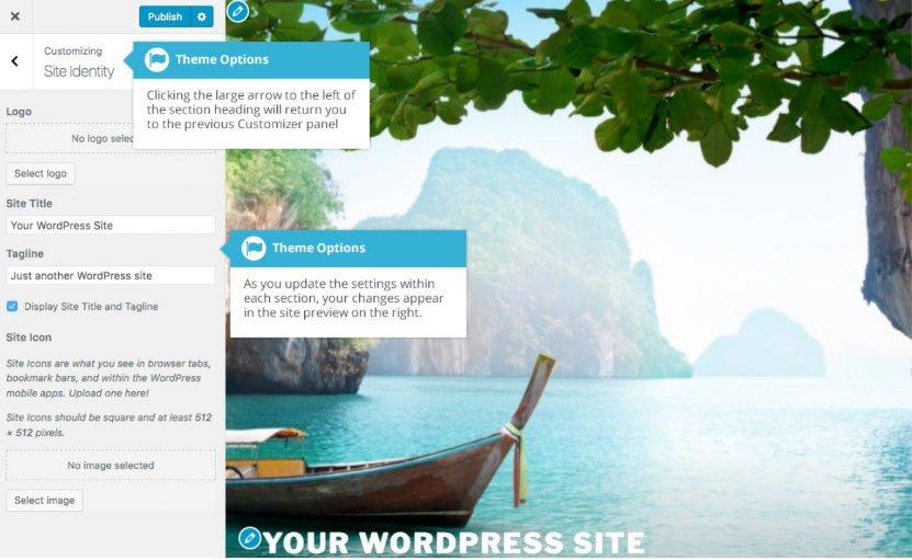 Personalizzare il tuo sito WordPress : opzioni tema