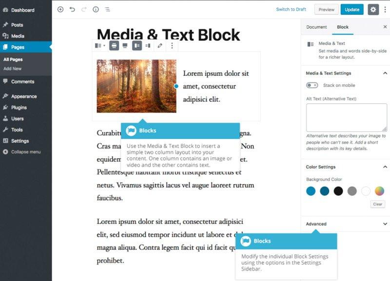 Elementi di Layout Gutenberg - Blocco Media e Testo